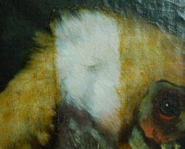 Schadensbild 7f_Stillleben mit Pelikan